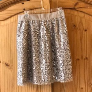 NWT JCrew lace a-line skirt